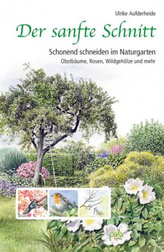 C_Der_sanfte_Schnitt